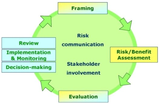 Current SAFE FOODS Risk Analysis Model at a Functional Level
