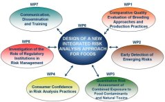 Input from the different Workpackages into the design of a New Integrated Risk Analysis Framework
